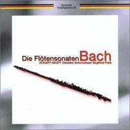 Comp.flute Sonatas: Haupt(Fl)etc
