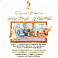 Concertos: Vinna Symphonic.co