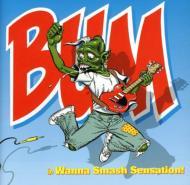 Wanna Smash Sensation