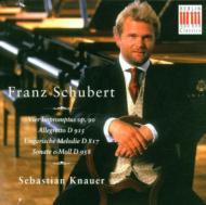 Piano Sonata.19, Impromptus: Knauer
