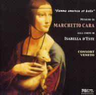 Cara: Piangeu La Donna Mia: Consort Veneto