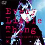 Every Little Thing Concert Tour Spirit2000