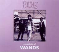 コンプリート・オブ WANDS at the BEING studio