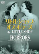 Little Shop Of Horrors Tallcase