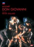歌劇『ドン・ジョヴァンニ』全曲 セラーズ演出、スミス&ウィーン響(2DVD)