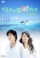イルカが猫に恋をした DVD-BOX