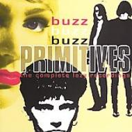 Buzz Buzz Buzz: Lazy Recordings