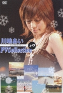 PV Collection +α