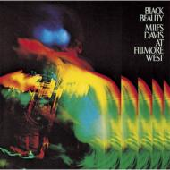 Black Beauty:At Fillmore West
