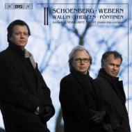 シェーンベルク:浄められた夜(ピアノ三重奏版)、ヴェーベルン:ピアノ作品集、他 ローランド・ペンティネン、ウルフ・ヴァリーン、トーレイヴ・テデーン