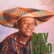 Ary Lobo