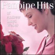 Panpipe Hits Of
