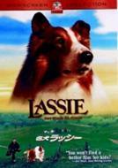 名犬ラッシー