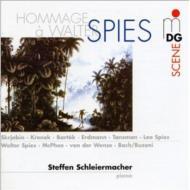 Schleiermacher(P) Hommage A Walter Spies