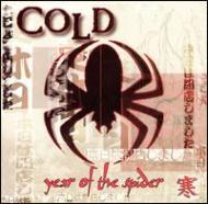 Year Of The Spider -Clean
