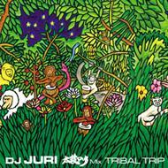 太鼓dub Mix: Tribal Trip