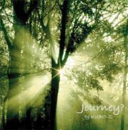 Journey ?