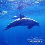 自然音シリーズ: 海洋の島、小笠原