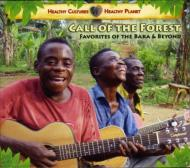 Call Of Forest