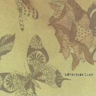 飛び立った7頭の蝶たち Sept papillons ont pris leur envol