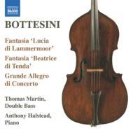 ルチアによる幻想曲、エレジー第2番、メンデルスゾーン風協奏曲、他 マーティン、ホルステッド