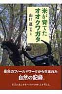 米が育てたオオクワガタ イワサキ・ノンフィクション