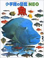 魚 小学館の図鑑NEO