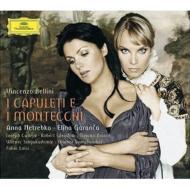 『カプレーティとモンテッキ』全曲 ルイージ&ウィーン響、ネトレプコ、ガランチャ、他(2008 ステレオ)(2CD)