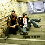 Flying Walrus