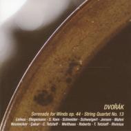 管楽セレナード、弦楽四重奏曲第13番 ルルー、カム、ノイネッカー、テツラフ、ヴァイトハース、他