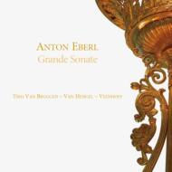 Chamber Works With Clarinet: Trio Van Bruggen-van Hengel-veenhoff Etc