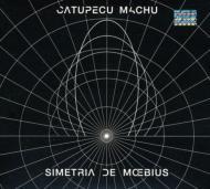 Simetria De Moebius