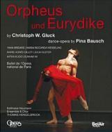 グルック (1714-1787)/Orphee Et Eurydice: Bausch Hengelbrock / Balthasar-neumann Ensemble Paris Opera Bal
