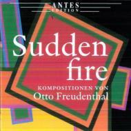 Sudden Fire-chamber Works: Tewes(Mand)Freudenthal(P)Wodnansky / Musici Di Praha