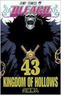 BLEACH 43 ジャンプ・コミックス