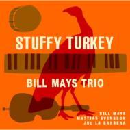 Stuffy Turkey
