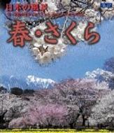 日本の風景 春 さくら