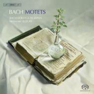 Comp.motets: Suzuki 鈴木雅明 / Bach Collegium Japan