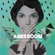 Mini Album: Ames Room