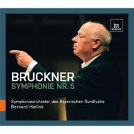 交響曲第5番 ベルナルド・ハイティンク&バイエルン放送交響楽団