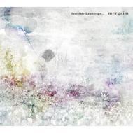 Invisible Landscape...