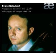 Arpeggione Sonata, Piano Trio, 1, Sonatina, 1, : Coppey(Vc)Gringolts(Vn)P.laul(P)