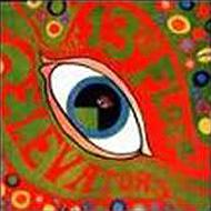 Psychedelic Sounds Of...