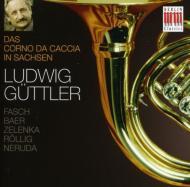 Corno Da Caccia In Saxony-concertos: Guttler / Virtuosi Saxoniae
