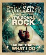 It's Gonna Rock...'cause That's What I Do