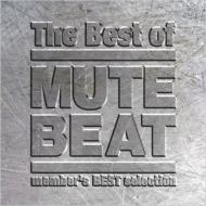 The Best of MUTE BEAT