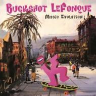Music Evolution (180グラム重量盤レコード/Music On Vinyl)