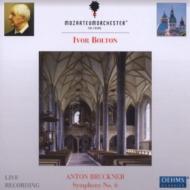 交響曲第6番 ボルトン&モーツァルテウム管弦楽団