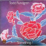 Something / Anything (2枚組/180グラム重量盤レコード)