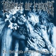 Principle Of Evil Made Flesh